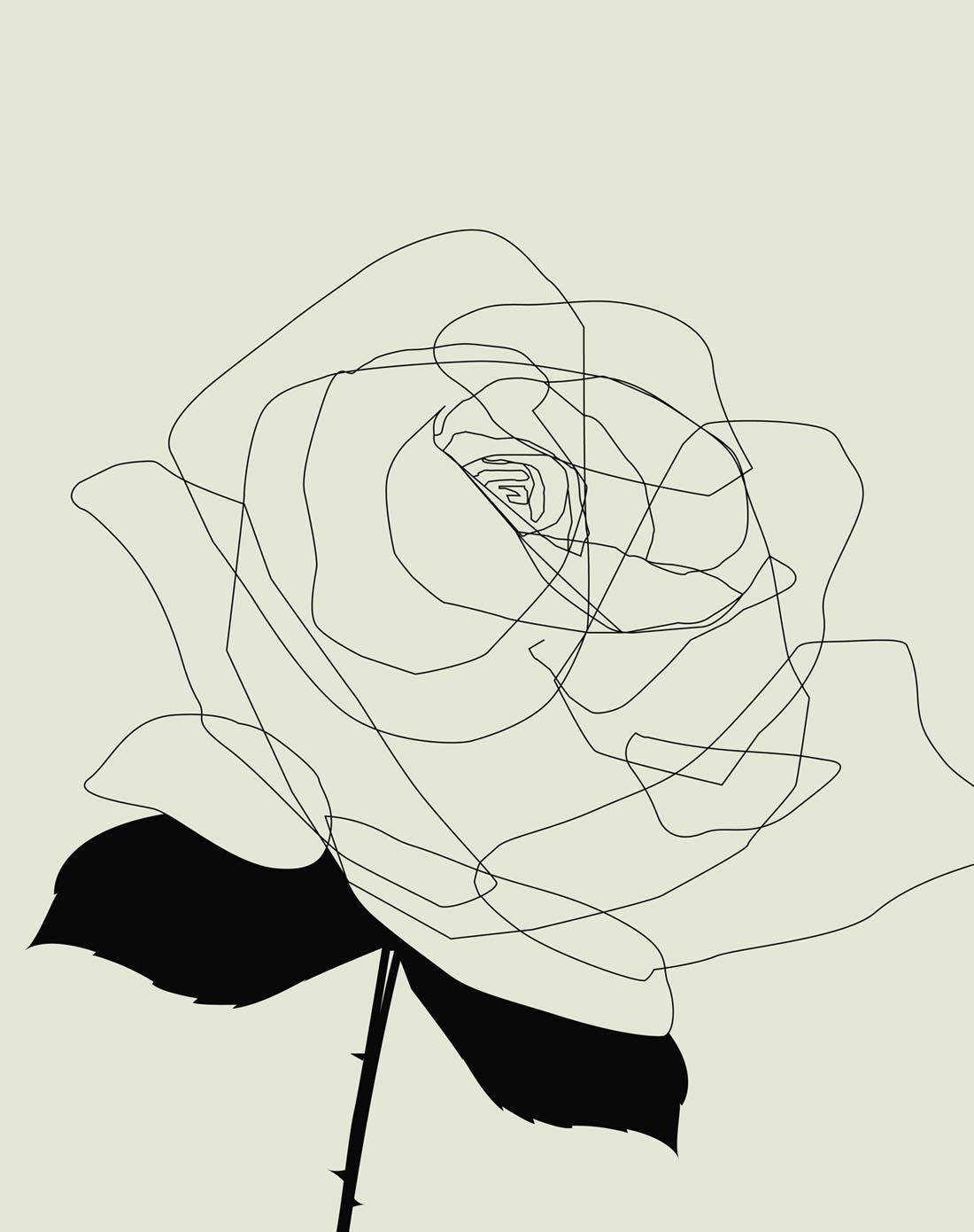 黑玫瑰手绘手机壁纸
